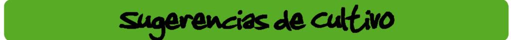 banner sugerencia de cultivo ecogarden irisana