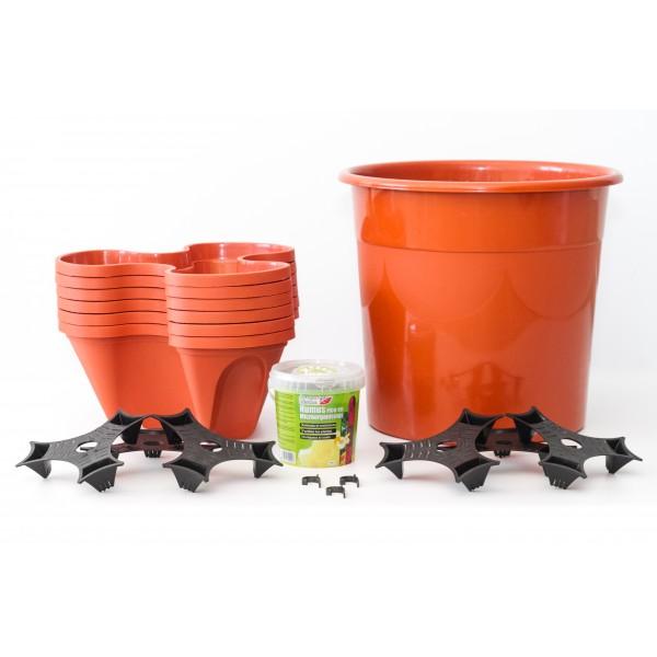 kit cultivo vertica ecogarden irisana