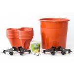 kit-para-cultivo-domestico-ecogarden-irisana-150x150