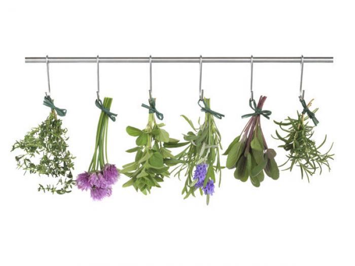 secando_aromaticas